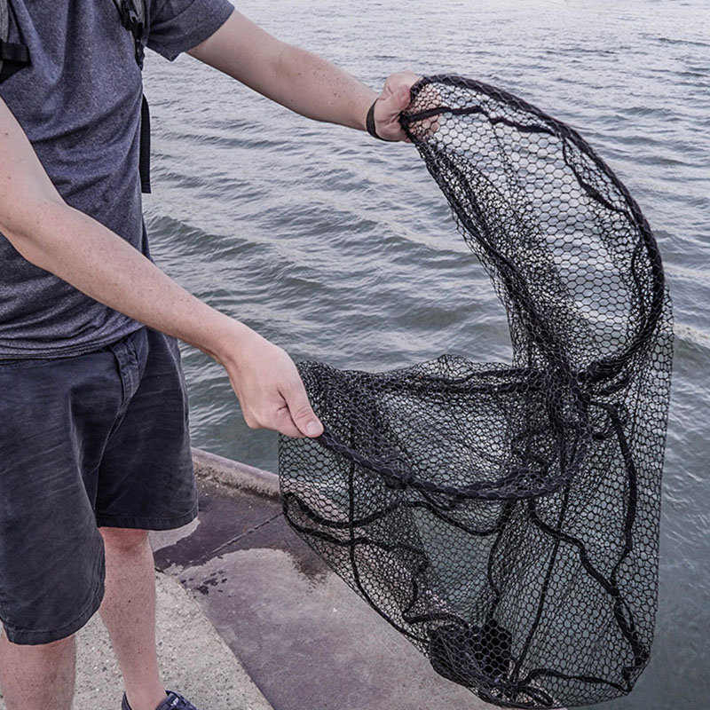 Which Landing Net - Featured Image