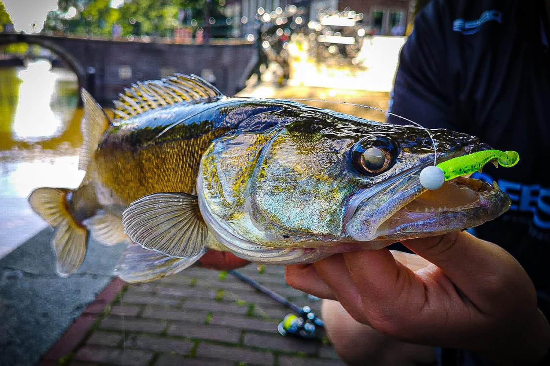 Street_Fishing_02_Blog